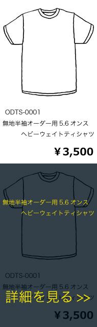ODTS-0001